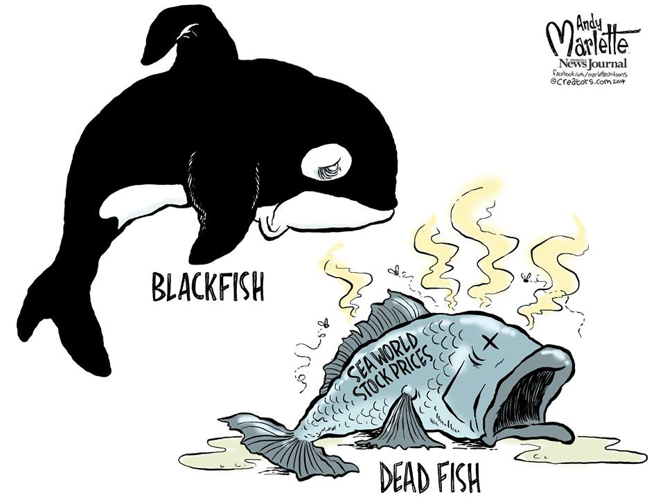 Andy Marlette - Sea World